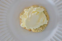 lemon-mascarpone-tartlette-009